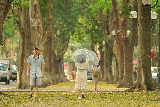 Con đường Phan Đình Phùng.